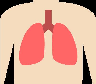 肺がん・横隔膜種・胸膜中皮腫